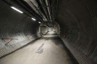 Untuk Cadangan Kiamat,'Doomsday Vault' Terima 50.000 Benih Tumbuhan Baru