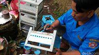Kompor Bahenol dari Sukabumi Ini Berbahan Bakar Fermentasi Singkong