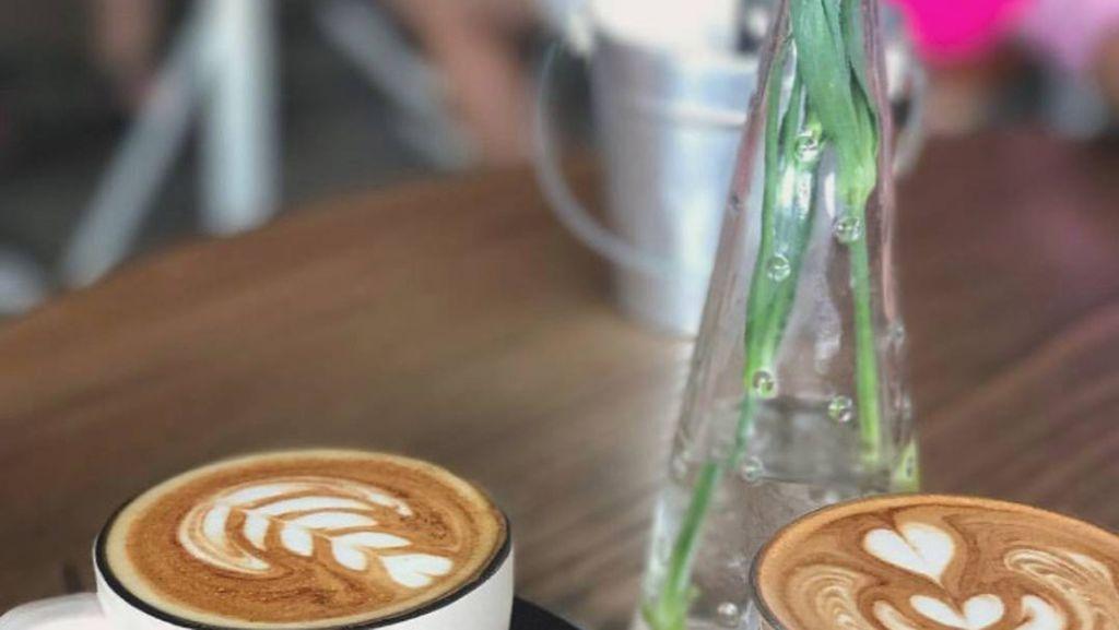 Mencicip Latte dan Brisket Burger Buatan Kafe Asal Sydney