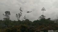 Masa Tugas Satgas Karhutla Berakhir, BNPB Apresiasi Riau Bebas Asap