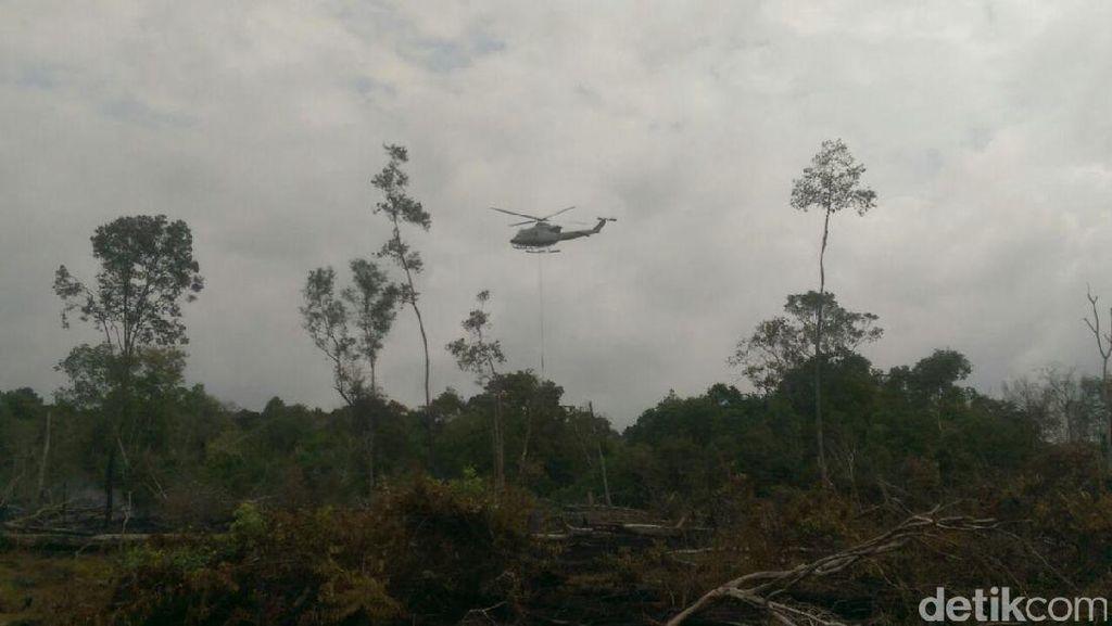 BMKG Deteksi Titik Panas Indikasi Karhutla di 6 Daerah Riau