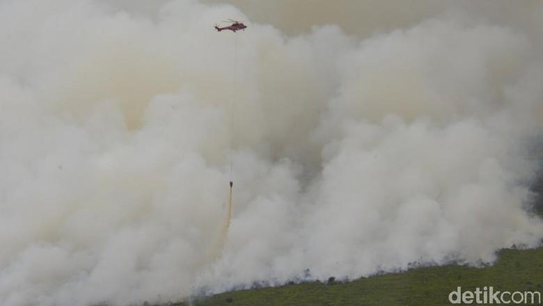 BMKG Temukan 10 Titik Kebakaran Hutan di Aceh