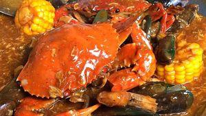 Ini Beda Kepiting Betina hingga Jantan Serta Cara Pilih Kepiting Segar