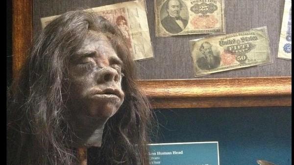 Museum Wilbur D. May Museum di Rancho San Rafael Regional Park, Reno, Nevada ini memiliki koleksi benda langka. Mulai dari kepala binatang yang diawetkan hingga kepala manusia yang menyusut (Google Maps)