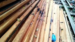 KLHK Sita 11 Kontainer Kayu Ilegal Senilai Rp 3,5 M di NTB