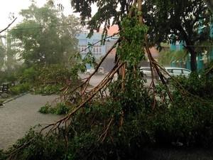 Waspada! Banjir Karena Siklon Cempaka Bisa Cemari Sumber Air Bersih