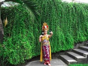 Rombongan Raja Salman Ini Tampil Cantik Pakai Kostum Bali