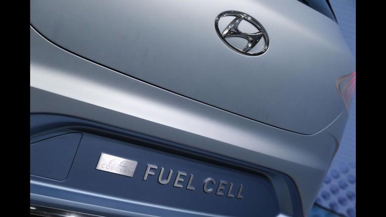 Hyundai Fuel Cell. Foto: Pool (Motor1)
