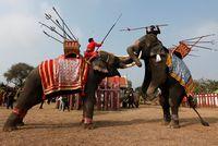 Gajah dulunya dijadikan pasukan perang.