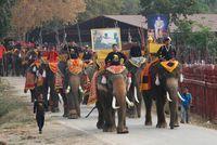Warga Thailand merayakan Hari Gajah.