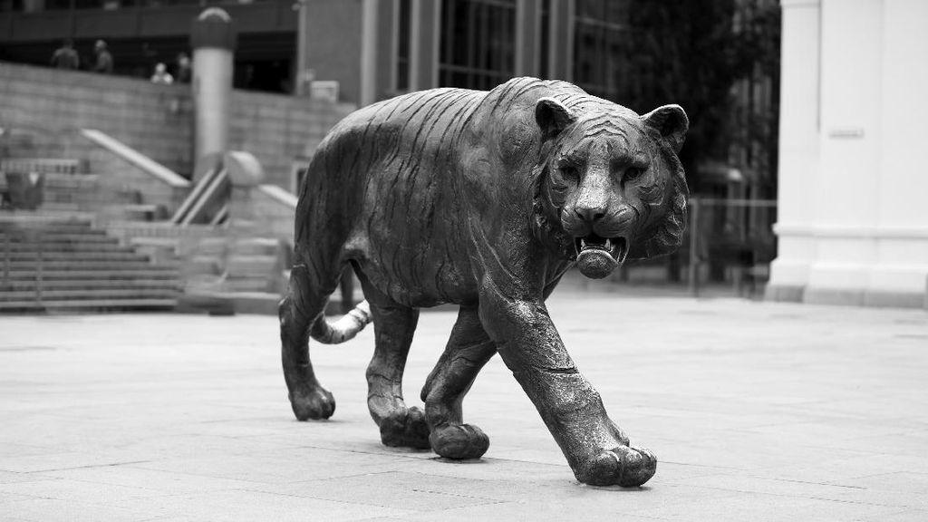 Bikin Patung Macan Itu yang Sangar, Seperti di Norwegia & India