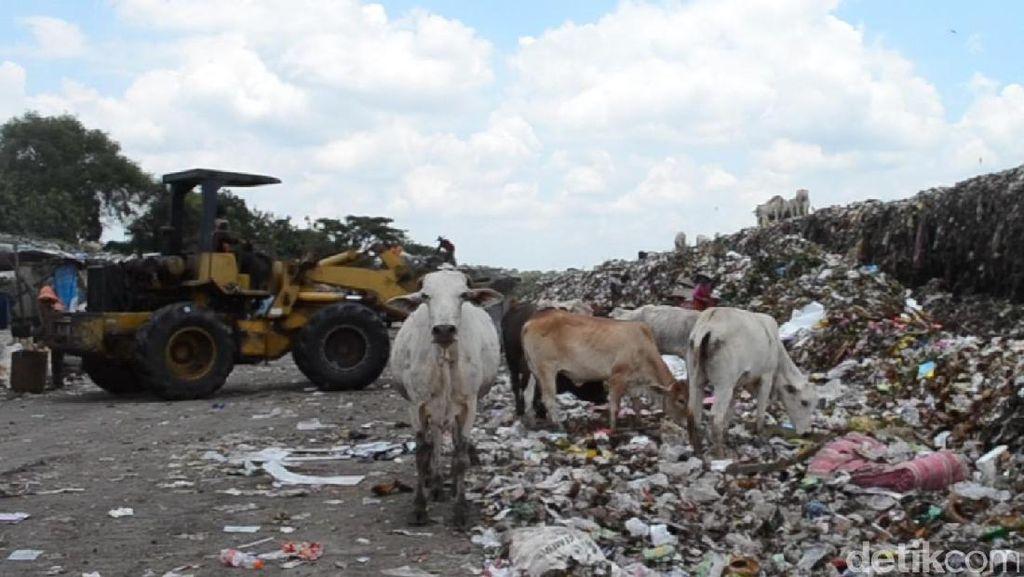 Bupati Tangerang Tawarkan 18 Ha untuk Pembangkit Listrik Tenaga Sampah