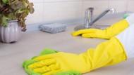 Lemon dan Garam Bisa Bersihkan Lantai Hingga Peralatan Dapur (1)