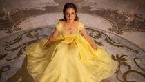 Film Barat Terlaris 2017: Beauty and the Beast hingga IT
