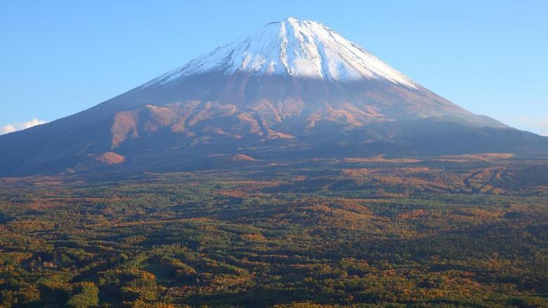 Hutan Aokigahara berada di kaki Gunung Fuji (Thinkstock)