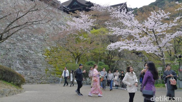 Banyak traveler yang senang berfoto di berbagai sisi kuil. Ada pula yang berkunjung dengan mengenakan pakaian tradisional Jepang, kimono. Tersedia persewaannya di dekat kuil ini (Kurnia/detikTravel)