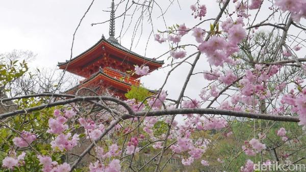 Tak hanya memiliki kuil dan bangunan khas Negeri Sakura Jepang yang otentik, Kyoto juga digemari oleh pasangan traveler yang mencari destinasi romantis. Dari sekian banyak destinasi romantis di Kyoto, Keage Incline atau rel Keage disebut sebagai salah satu yang paling romantis oleh wisatawan lokal (Kurnia/detikTravel)