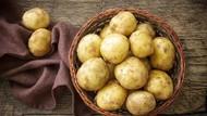 Kata Peneliti Makan 3 Sayuran Ini Bisa Memicu Kegemukan