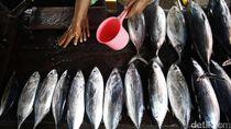 Pedagang Ikan di Medan Keluhkan Omset Turun karena Isu Bangkai Babi