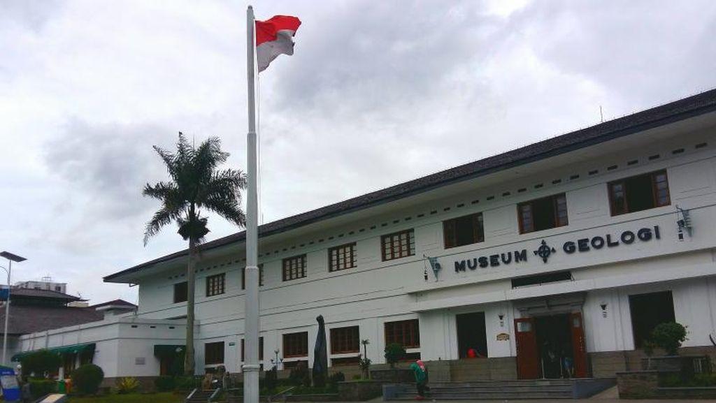 Seputar Museum Geologi Bandung: Sejarah Hingga Tiket Masuk