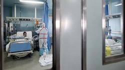 Di Tengah Wabah Virus Corona, China Hadapi Ancaman Flu Burung