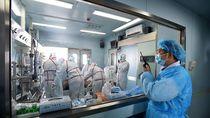 Indonesia Masih Punya Potensi Pandemi Flu Burung