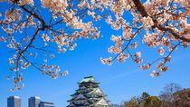 Pengamat Pariwisata: Sayonara Tax di Jepang Angkanya Wajar