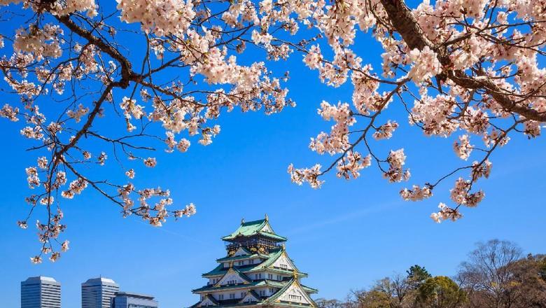 Kastil Osaka (Thinkstock)