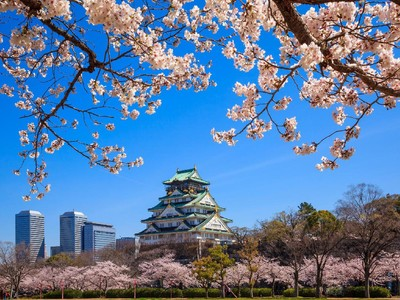 Belum Sah ke Osaka, Kalau Belum ke Kastil Cantik Ini