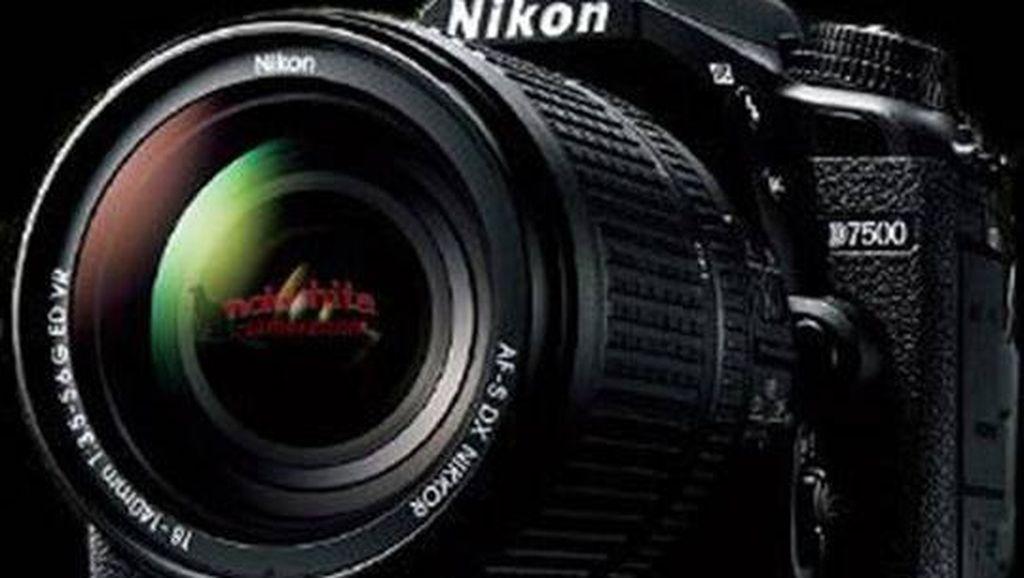 DSLR untuk Fotografer, Masih Perlu?
