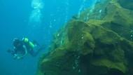 Gunung Api Terbaru Bawah Laut Ditemukan, Gara-gara Terus Goyang