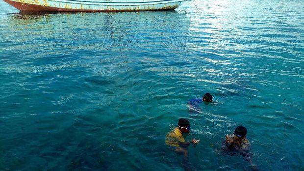 Mereka jago berenang (Mukhlis/detikTravel)