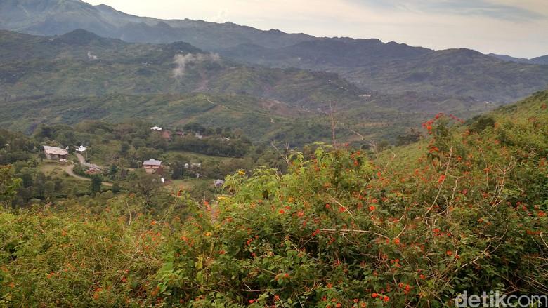 Listrik Perbatasan Indonesia-Timor Leste, Antara Byar-pet dan Gelap