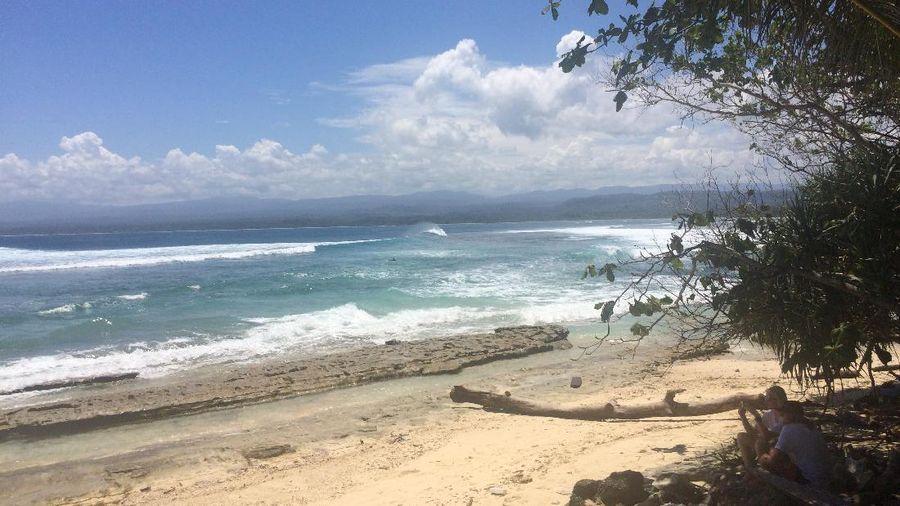 Reputasi Tanjung Setia sebagai destinasi surfing kelas dunia gaungnya sudah mulai terasa. Pantai ini jadi idaman para peselancar pro, baik dari dalam maupun luar negeri (Monica/detikTravel)