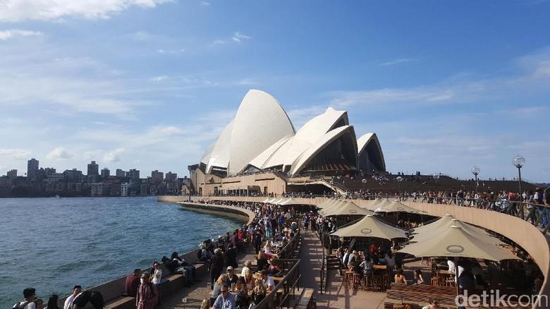 Ilustrasi Australia (Fitraya/detikTravel)