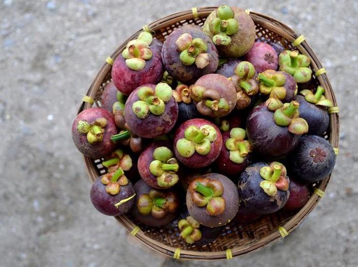 11 Manfaat Manggis untuk Kesehatan dan Kecantikan Foto: iStock