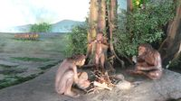Display kehidupan manusia purba di Museum Sangiran