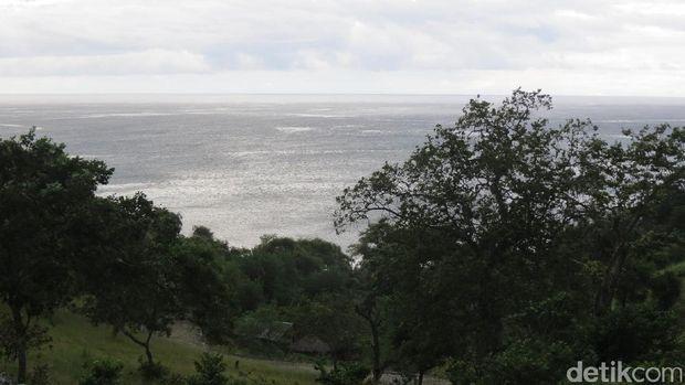Bukit Teluk Gurita (Fitraya/detikTravel)