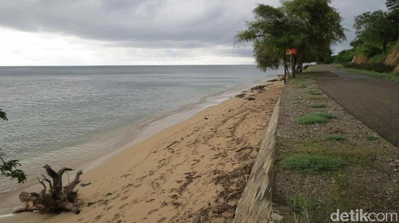 Pantai Teluk Gurita yang indah tapi sepi (Fitraya/detikTravel)