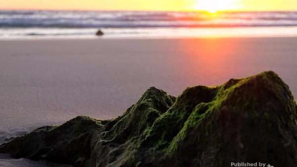 Pantai Nihiwatu masuk ke dalam pantai terbaik se-Asia. Pantai yang berada di Nusa Tenggara Timur ini pun dikenal sebagai salah satu pantai tujuan peselancar kelas dunia karena memiliki ombak yang cepat atau biasa dijuluki left god waves. (I Gede Leo Agustina/dTraveler)