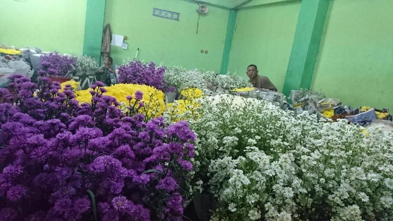 Semua bunga komersil dari dalam dan luar negeri ada di Pasar Bunga Rawa Belong (Ahmad Masaul Khoiri/detikTravel)