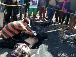 Sesosok Mayat Pria Penuh Luka Bacok Ditemukan di Pantai Jember