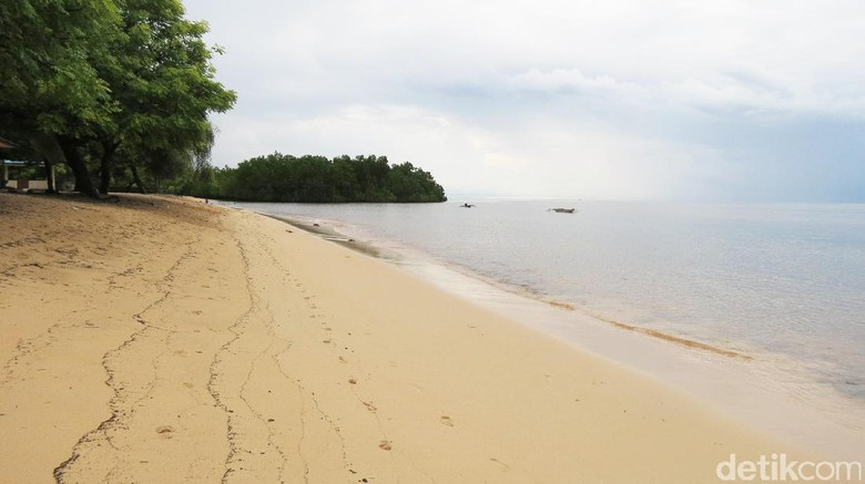 Pantai Pasir Putih Atapupu (Fitraya/detikTravel)