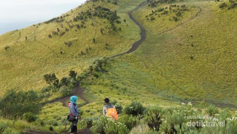 Panorama di Gunung Merbabu (Tiara Rahmadania/dTraveler)
