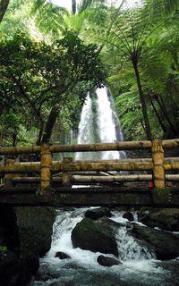 Jembatan keren tempat foto-foto traveler (Wahyu/detikTravel)
