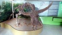 Display kerbau purba di Cluster Museum Dayu (Wahyu/detikTravel)