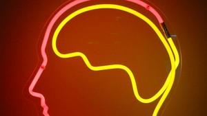 Belajar Bahasa Inggris: Makna dan Penggunaan Kata Brain dan Mind