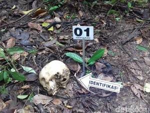 Warga Temukan Tengkorak Manusia di Kebun Sawit