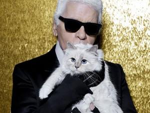 Vans Gandeng Karl Lagerfeld, Koleksi Dirilis 7 September
