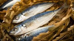 Kolesterol jahat harus selalu diturunkan kadarnya dalam tubuh. Untuk membantu menurunkan, konsumsi 8 makanan ini setiap harinya secara rutin.